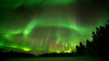 Nordlys over Pasvik - Foto: Randulf Valle /