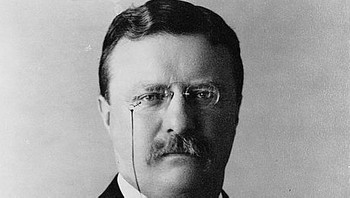 President Theodore Roosevelt - Foto: Library of Congress /