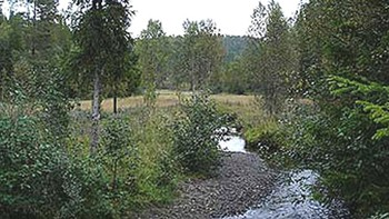 Norsk natur.