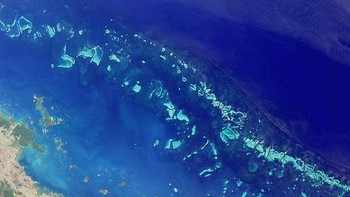 Great Barrier Reef - Verdas største korallrevsystem, Great Barrier Reef, sett frå NASA-satelitten MISR. - Foto: NASA /