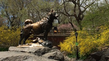 Balto-statue i New York