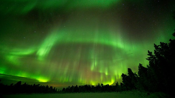 Nordlys over Pasvik - Foto: Randulf Valle