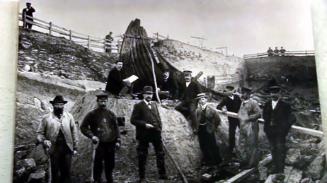 Utgraving Oseberg (Foto: Universitetet i Oslo)