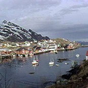 Fiskevr i Lofoten (NRK)