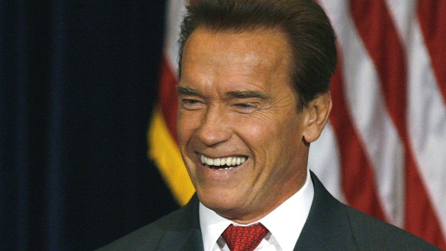 Arnold Schwarzenegger (Foto: DANNY MOLOSHOK /REUTERS )