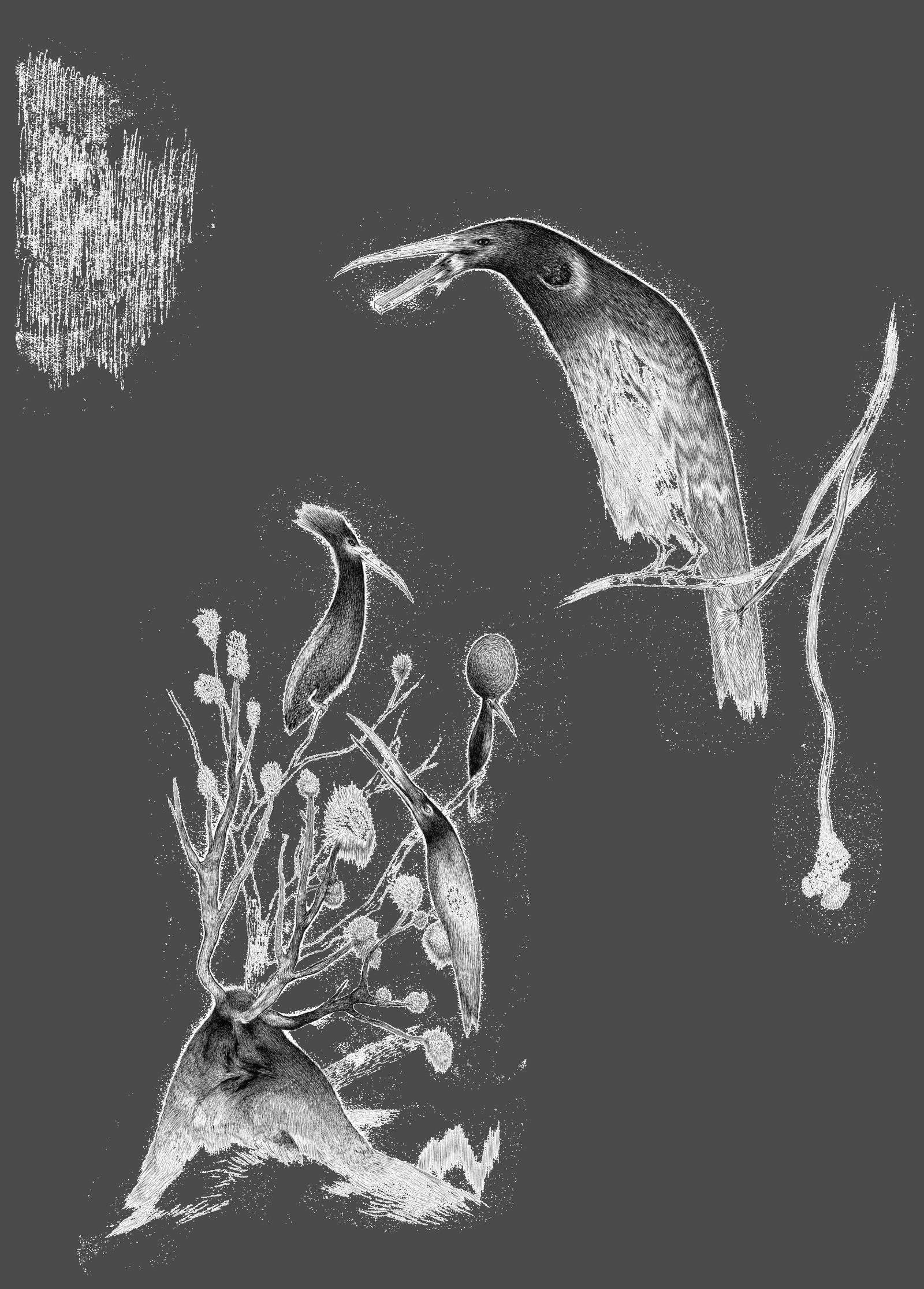 Tegning fra «Jegeren - en fortelling fra skogen».