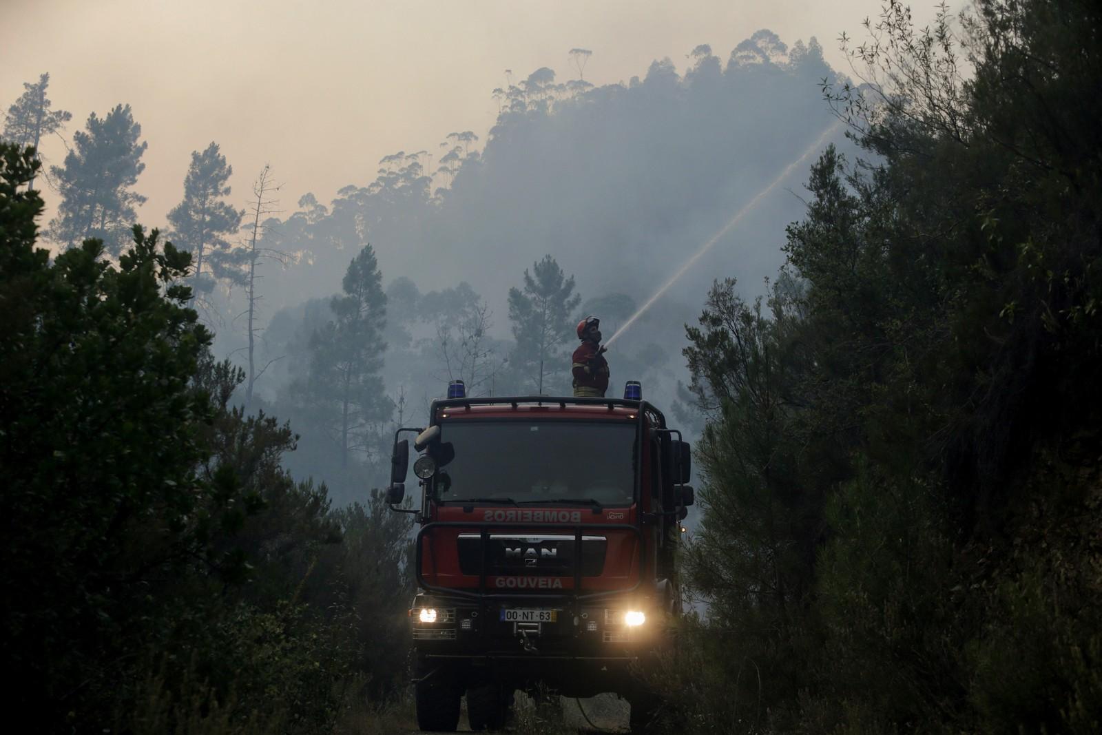 Brannmenn sprøyter vann på trær i Mendeira 19. juni.