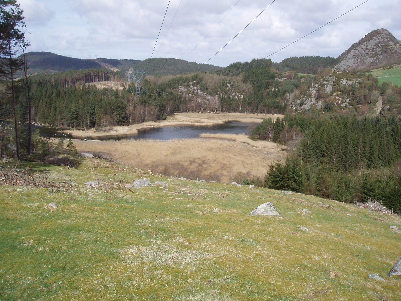 Bogafjellet til Brådsteinåsen - Møgedalshølen i front (Foto: Statens vegvesen)