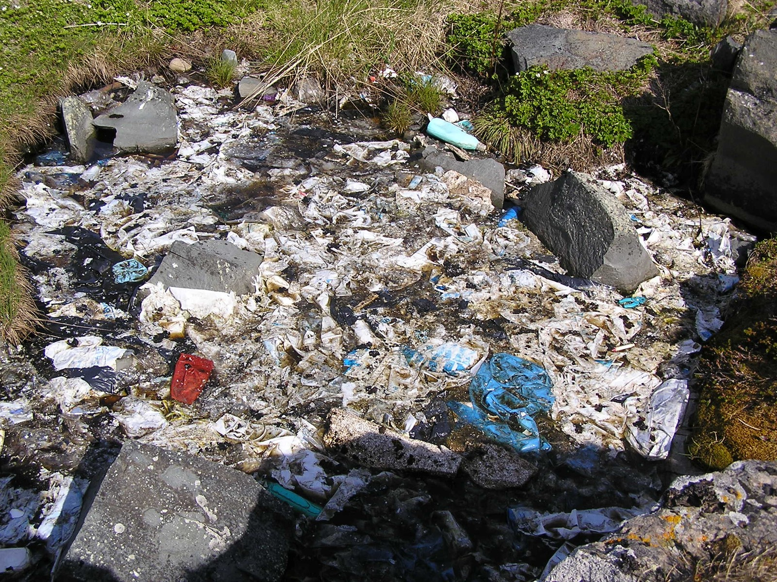 Før: Denne dammen var full av plast og annet søppel.