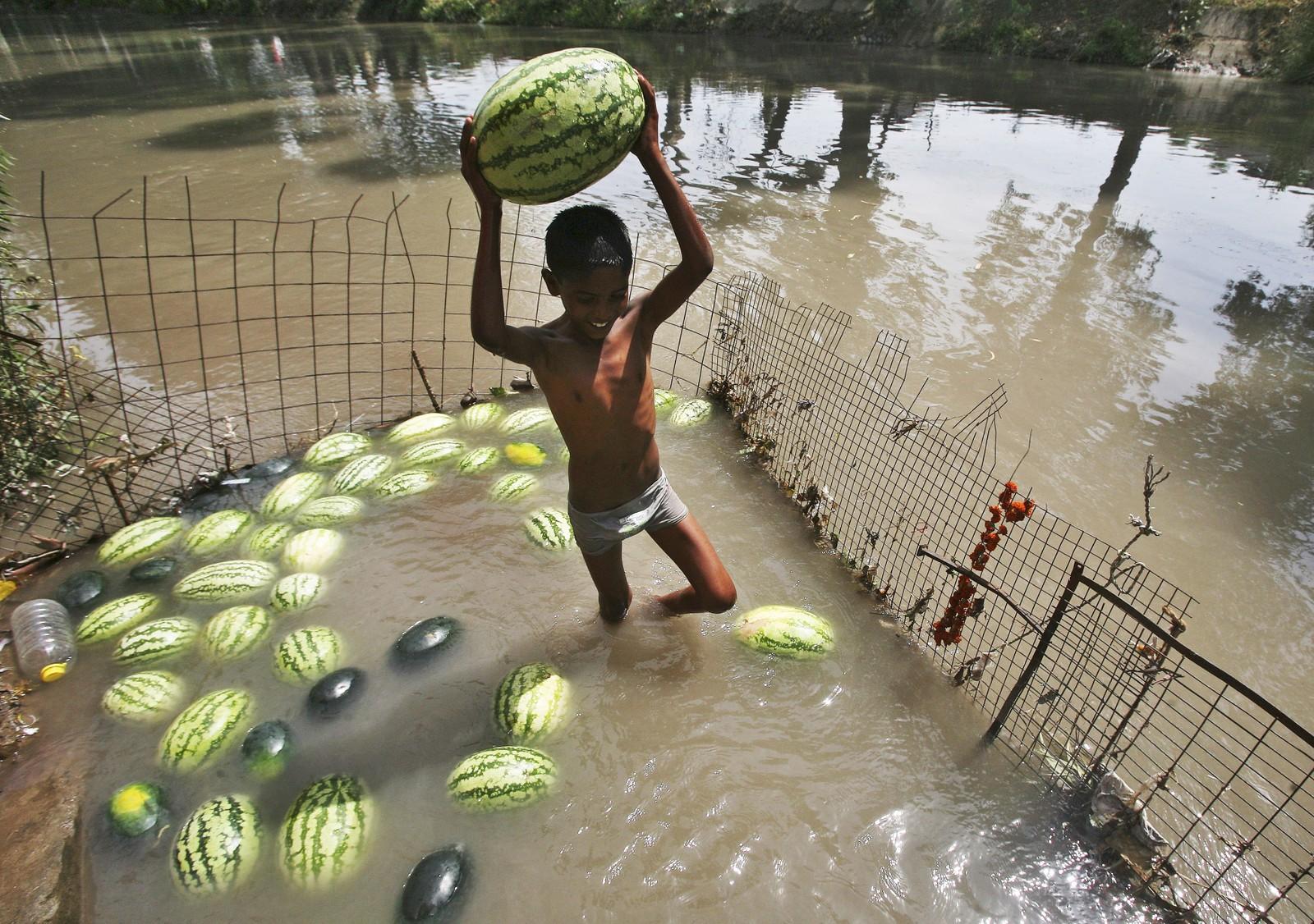 Vannmeloner ligger til kjøling i Jammu i India.