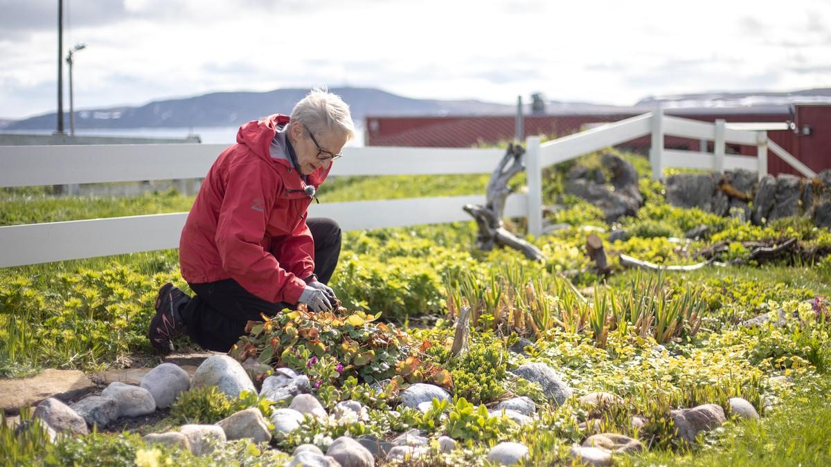 Evelyn Sandbakken er svært glad i hagen sin. Der har et varmere klima gitt flere planter og blomster bedre vekstvilkår.