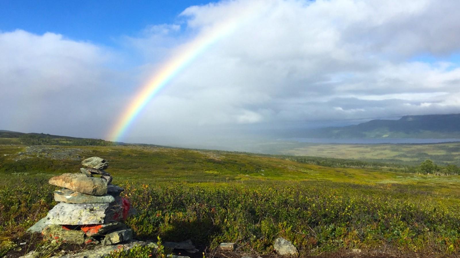 Regnbue og regnbyger over Nerskogen