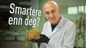 Smartere enn deg?