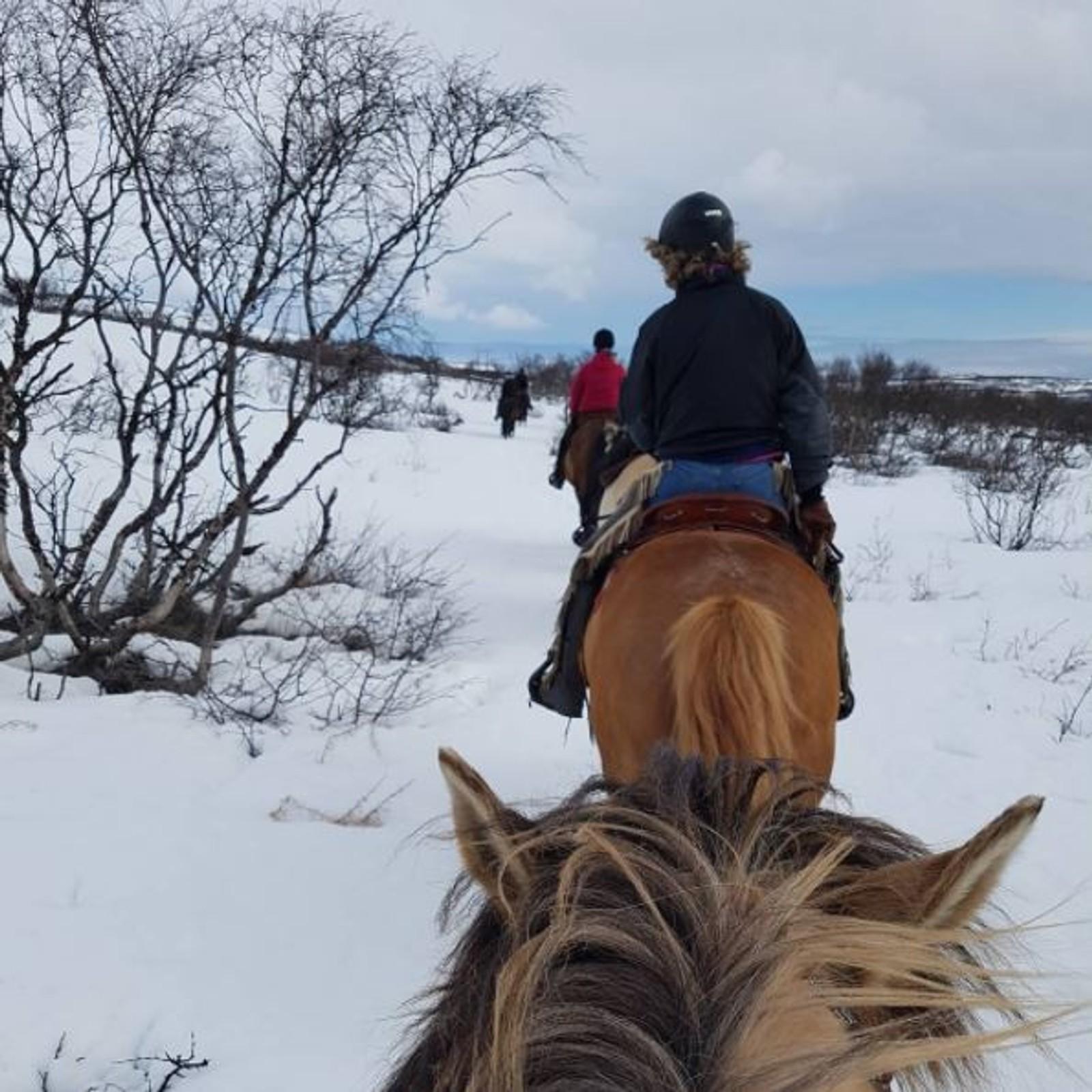 Ann-Kristin fikk vårfornemmelse, selv om det fortsatt var mye snø på pavelstien i Vadsø.