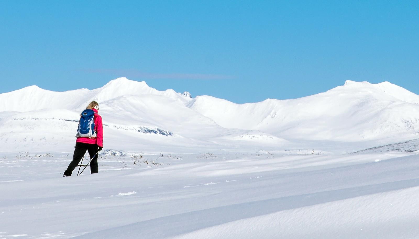 Skiturist i Sylan