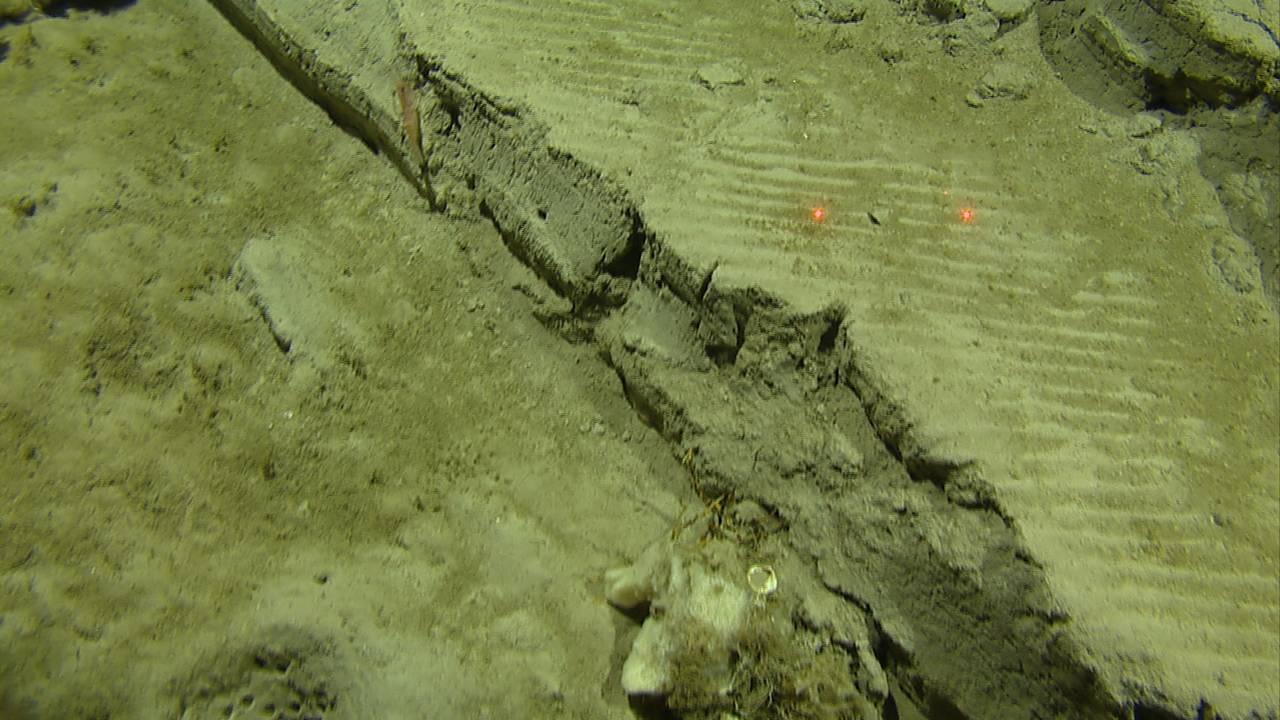 Store groper i havbunnen etter tråling