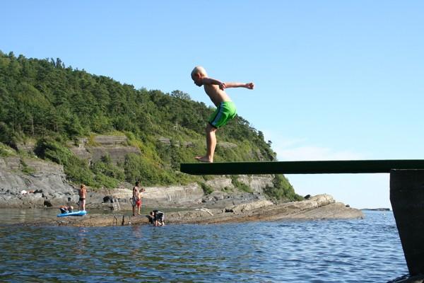 Sommer i Steinvika - Foto: Helge Oland