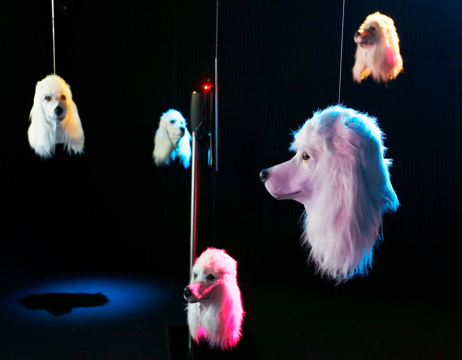 Skal det være et hundehode til pynt? Denne kunstutstillingen i Frankfurt viser fram kunstige varianter signert den britiske kunstneren Heather Phillipson.