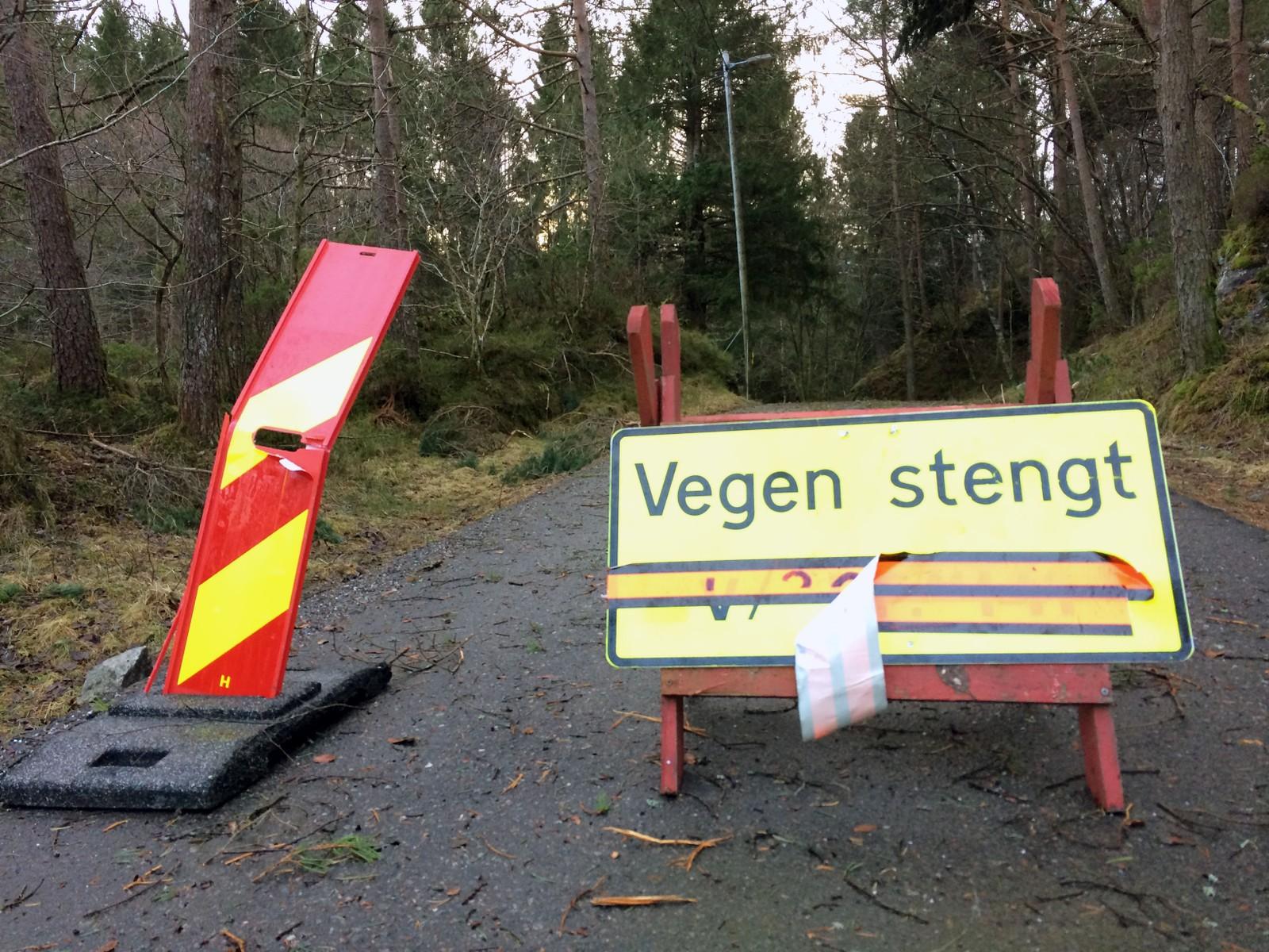 Geithusvegen på Hjellestad i Bergen er helt stengt. NRK-journalist Astrid Rommetveit forteller at det er så mange trær som ligger nede at hun ikke kan telle dem.