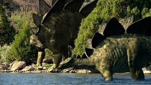 Andy møter stegosauruser