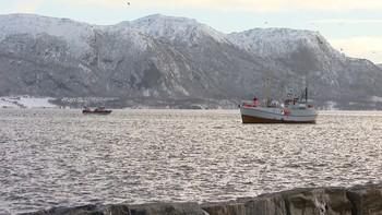 I Aukra i Møre-og Romsdal kan en kvinne forvente å leve ni år lenger enn en jevngammel kvinne i Byklandi Aust-Agder.