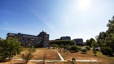 Tørt gress foran Meteorologisk institutt på Blindern etter sommerens ekstremvarme. – Vi vet at hvis den nordlige halvkule blir varmere enn gjennomsnittet, betyr det flere hetebølger og mer ekstremregn, sier Bjørn Samset.