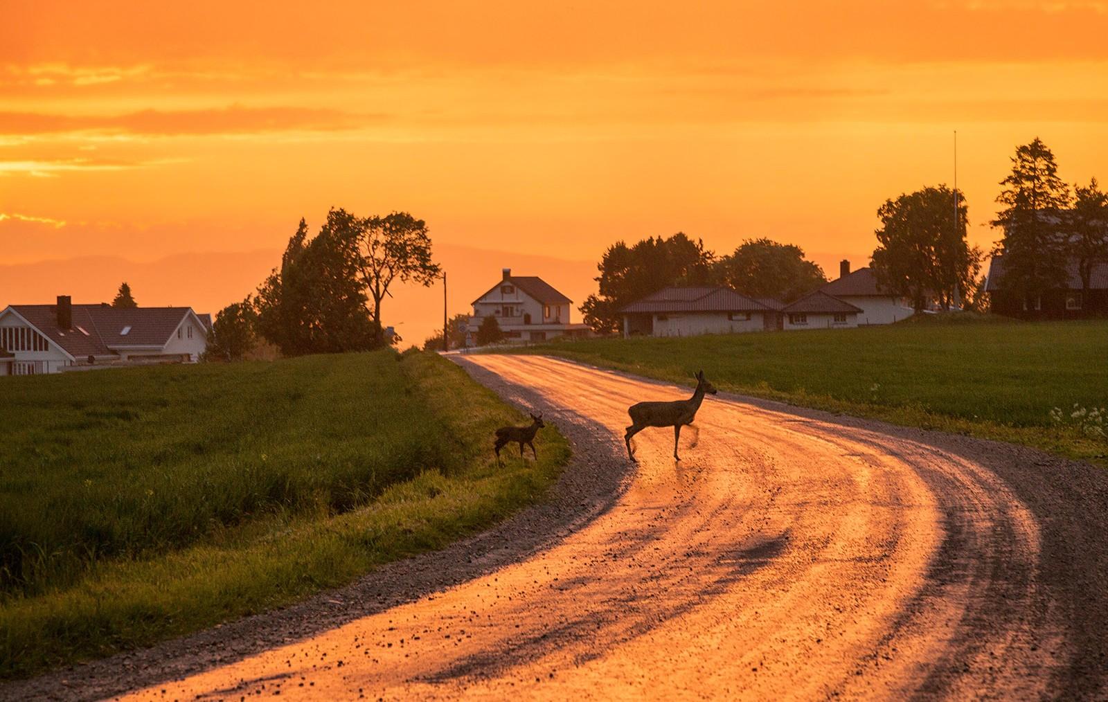 Solnedgang, Ranheim