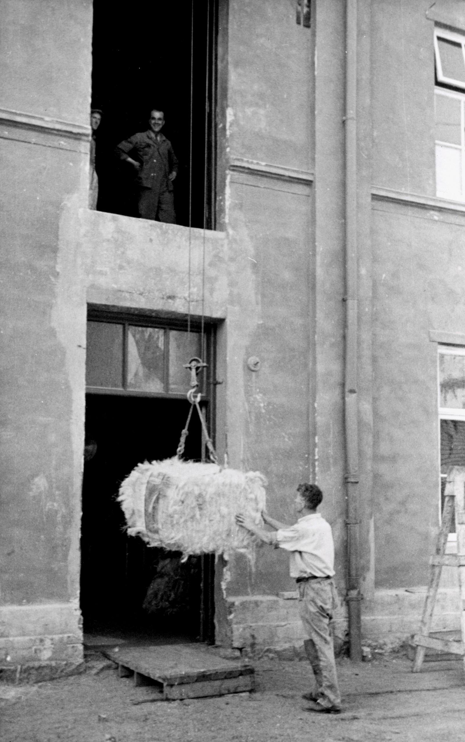 Firing av hampbunt. 1947.