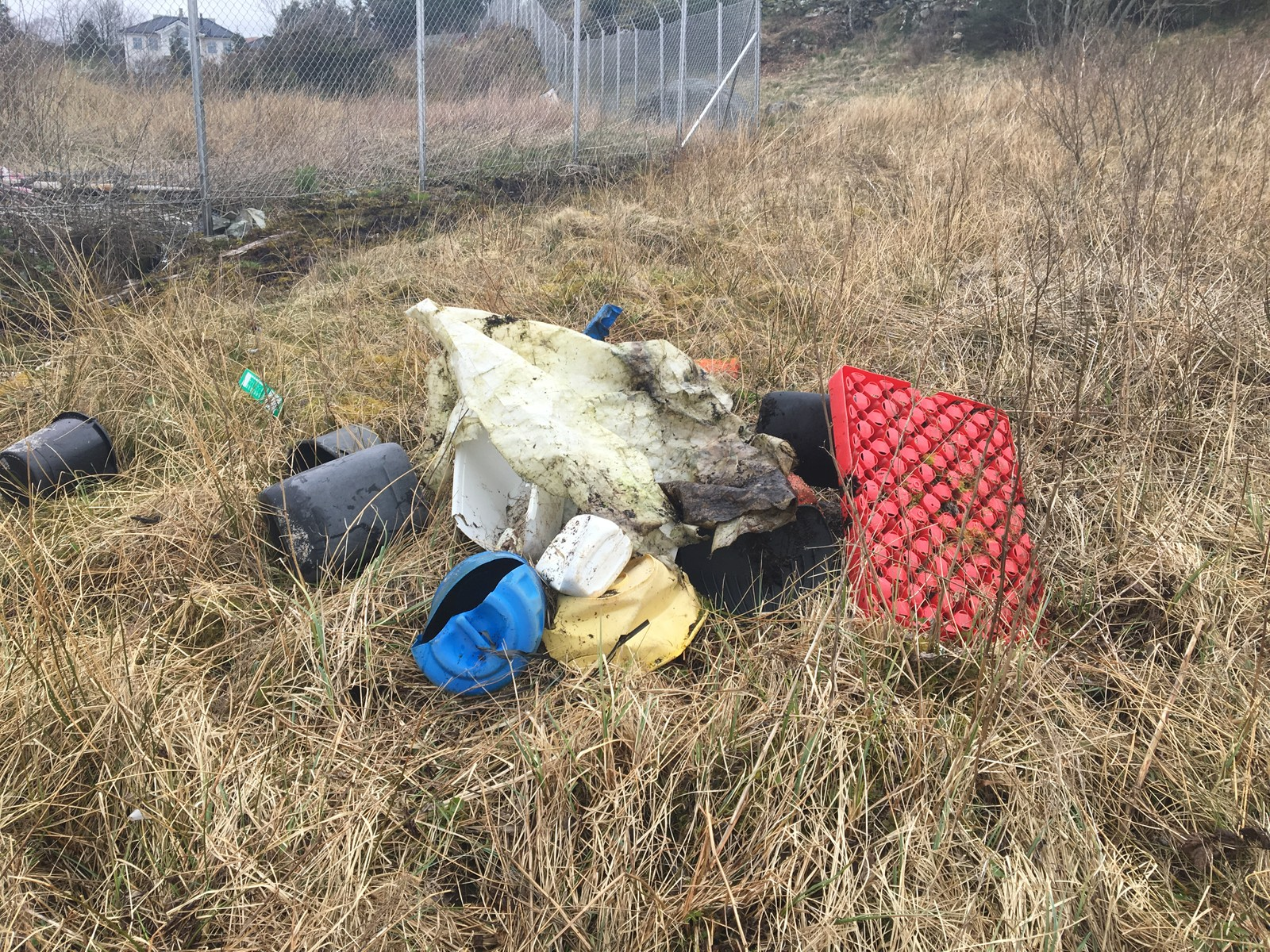 Søppelet som niendeklassingene fant.