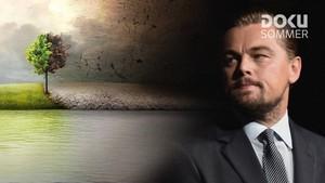 Dokusommer: DiCaprio - før syndfloden