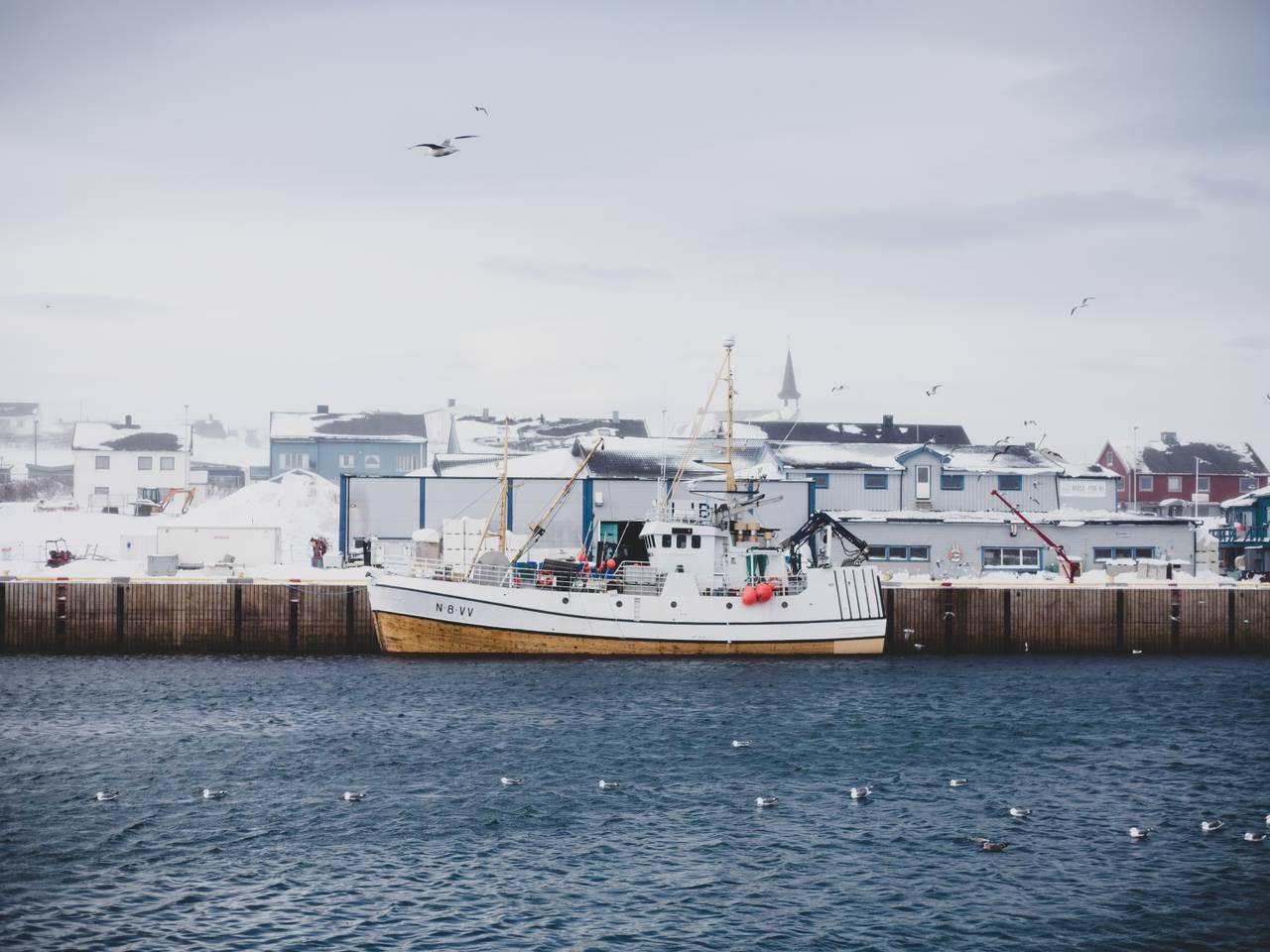 Fiskebåt på Berlevåg havn