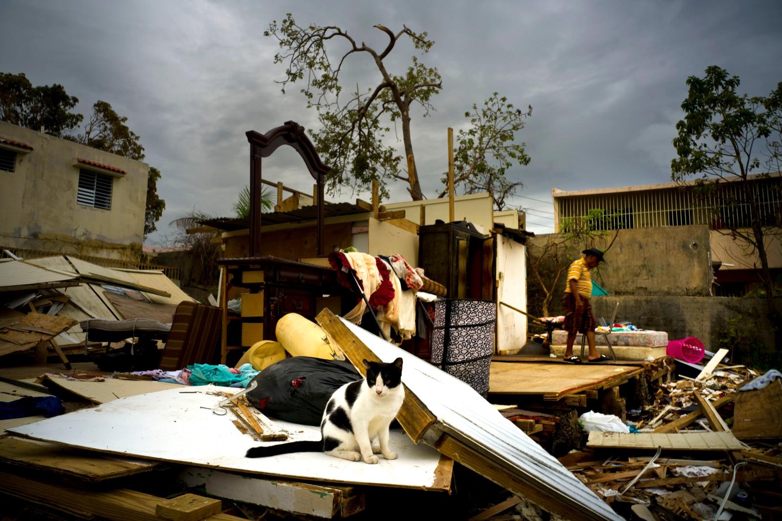 Orkanen Maria ødela det som en gang var et hus her i San Juan i Puerto Rico.