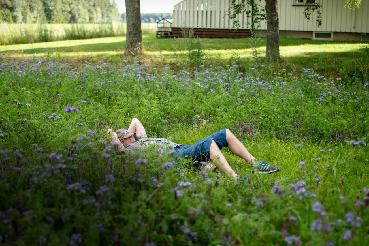 Fotografen André har lagt seg ned i høyt gress for å slappe av i solen. Han har capsen over ansiktet for å gjøre det lunt og godt. Rundt ham vokser høye villblomster.