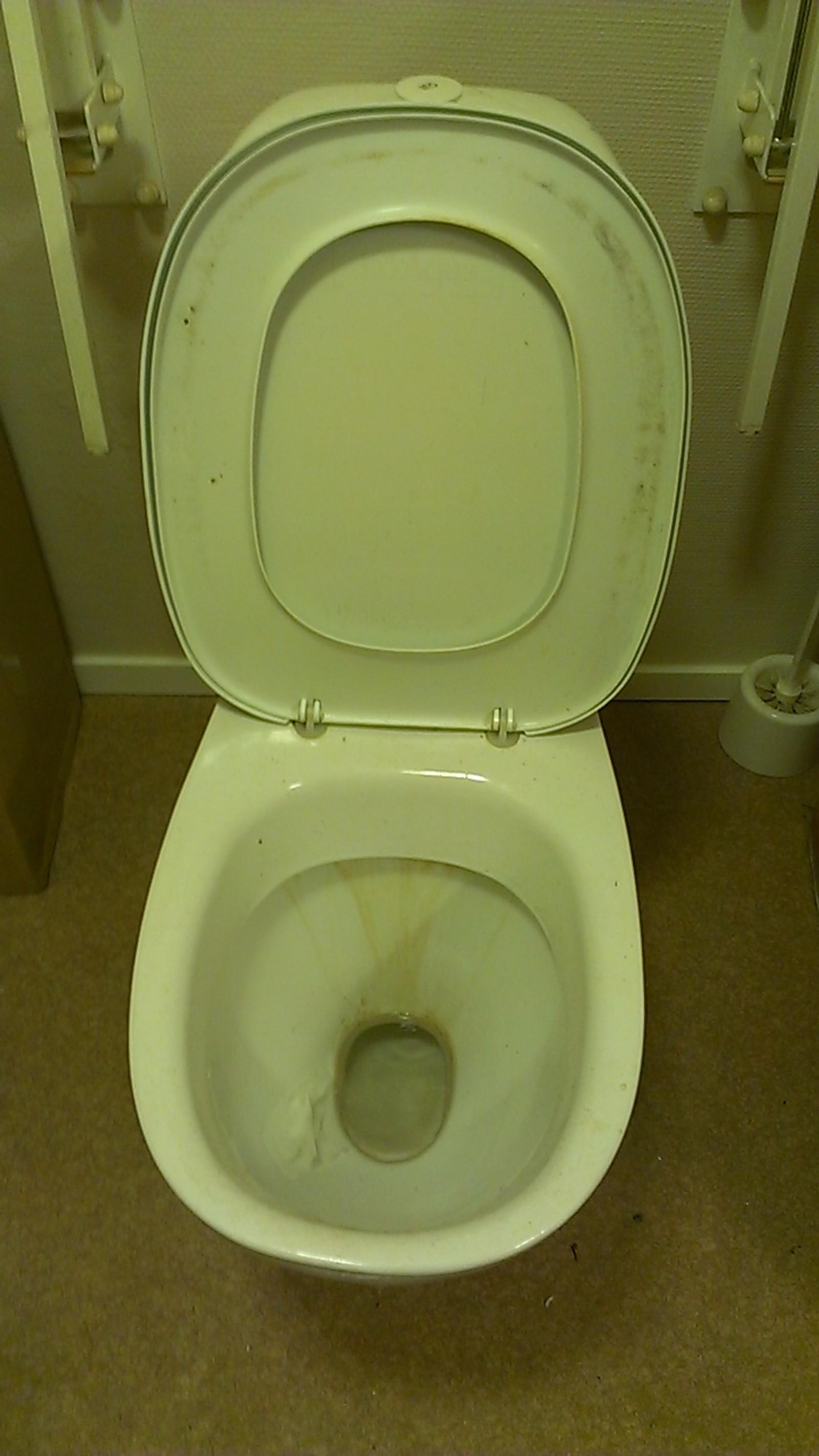 På toalettet i Møre og Romsdal er reinhaldet dårleg.
