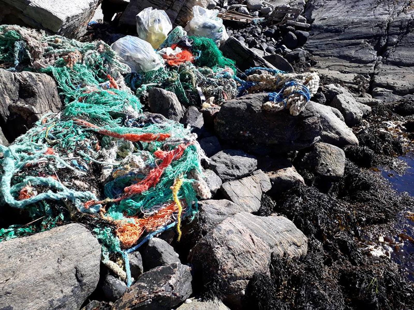 TAU: Tauverk preger mange strandkanter på vestlandet, her fra Gudlo i Fjell.