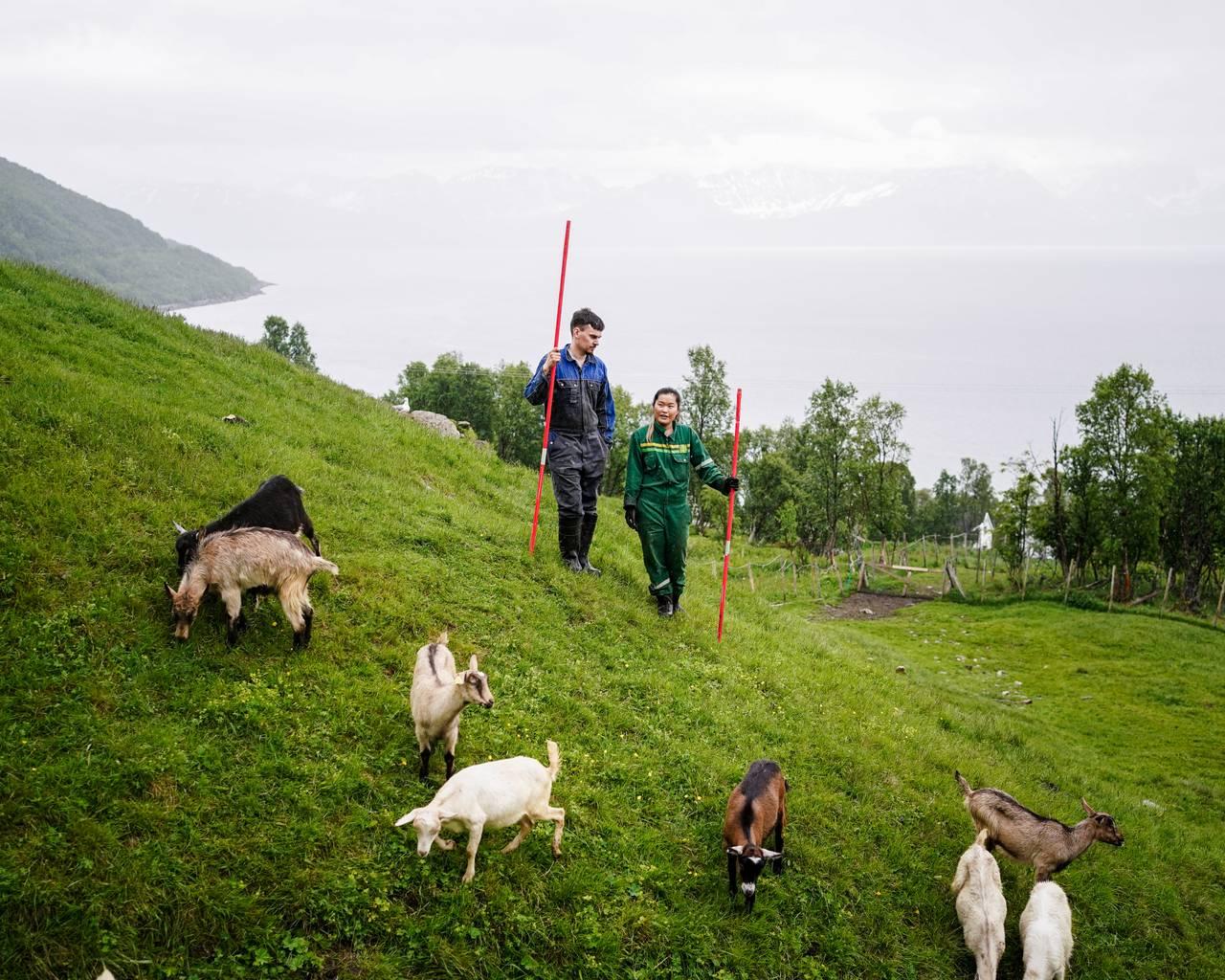 Ann-Hilde og Christian står og ser utover geitene.