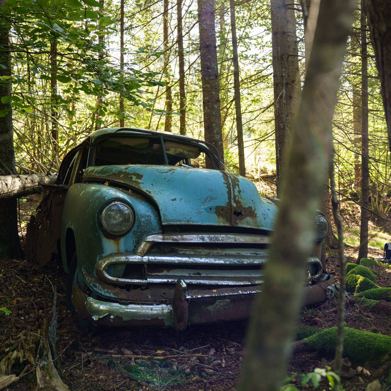 Vrak i skogen