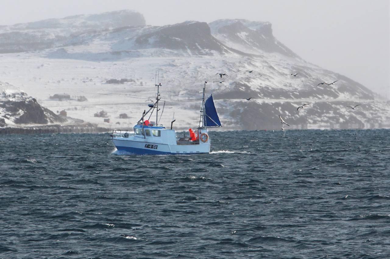 Sjark på Varangerfjorden