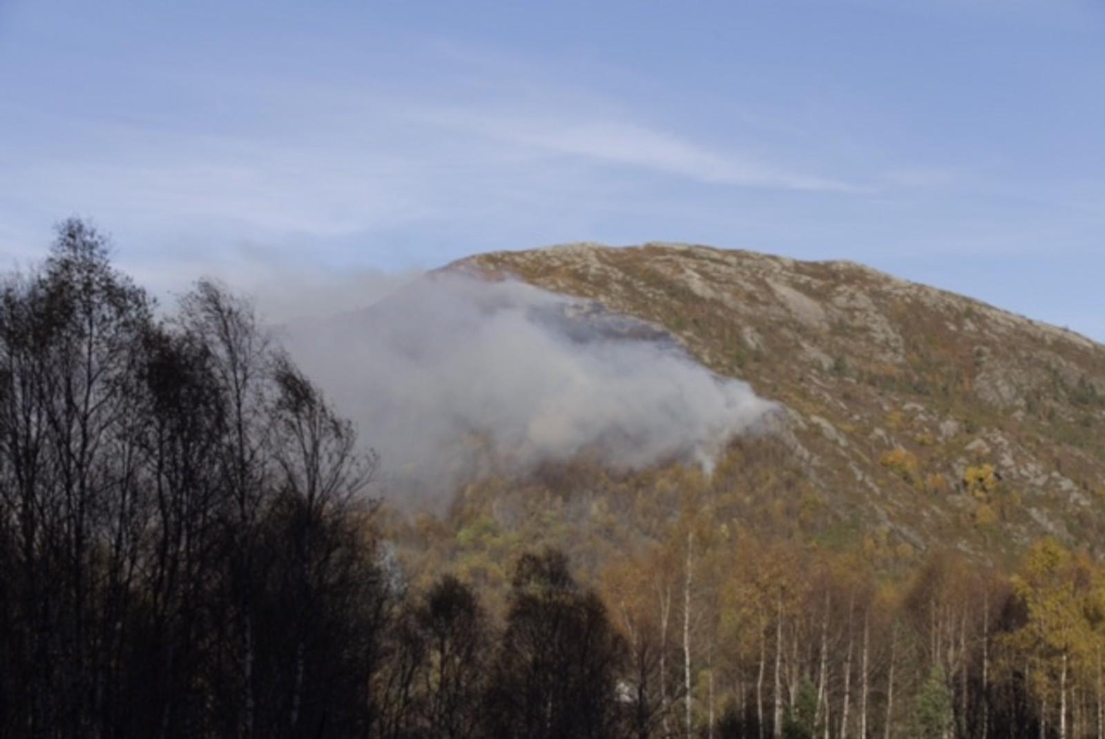 Skogbrann i Lavikdalen