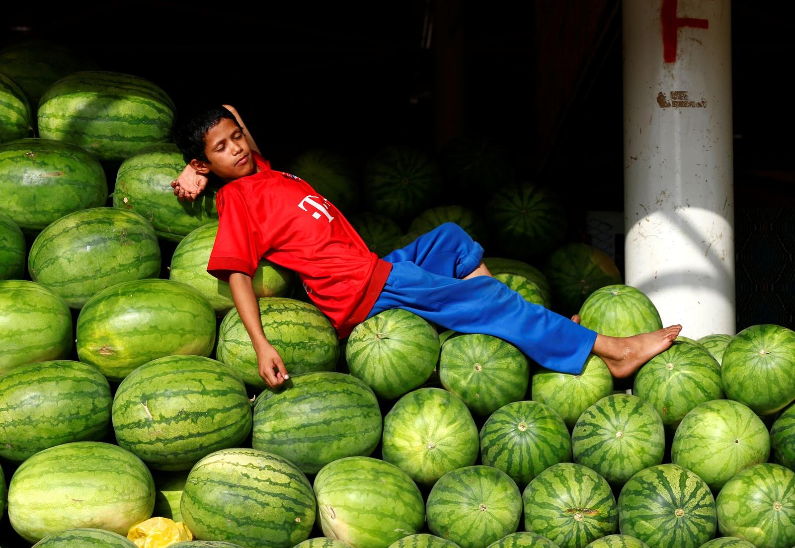 Riyadh, Saudi Arabia: Vannmeloner kan brukes til litt av hvert.