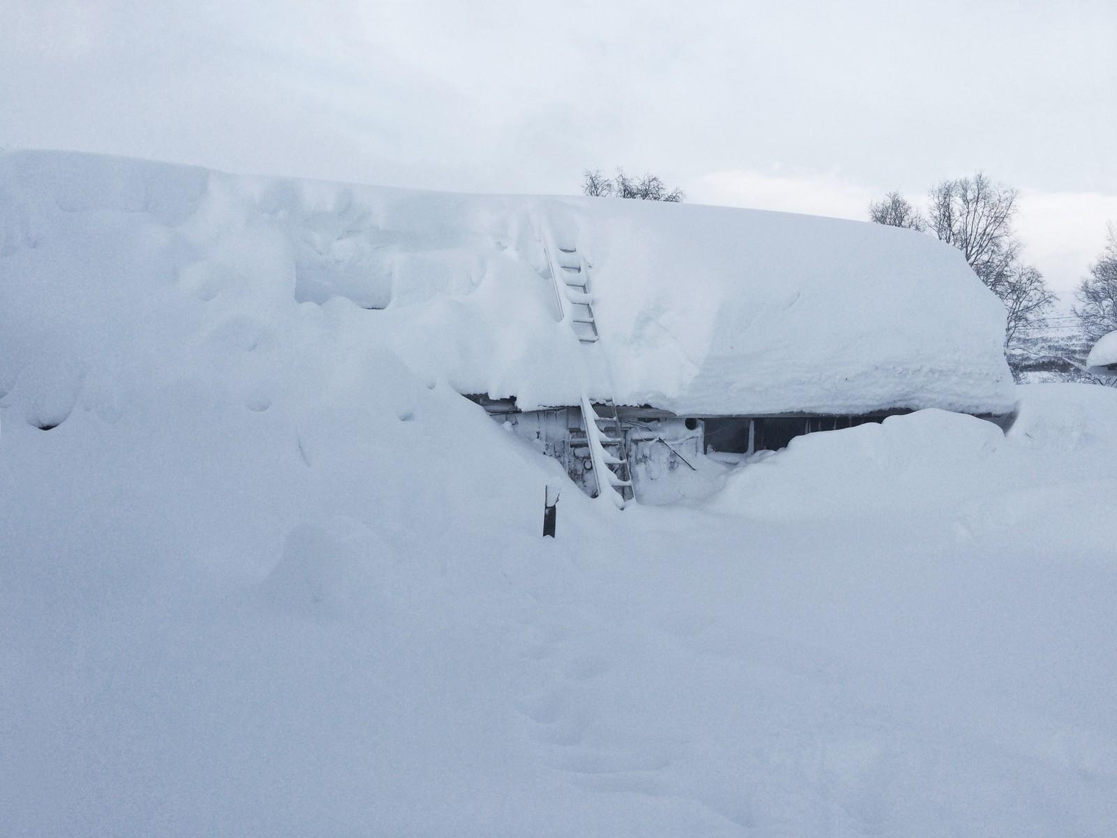 Nedsnødd og innesnødd i Bjåen i Setesdal