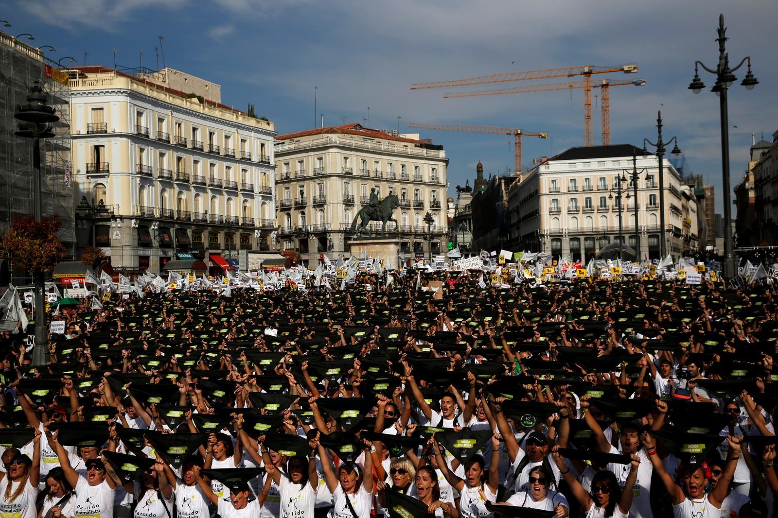 Demonstrasjonen i Madrid i dag er ein av dei største markeringa mot den den gamle spanske tradisjonen nokon gong.