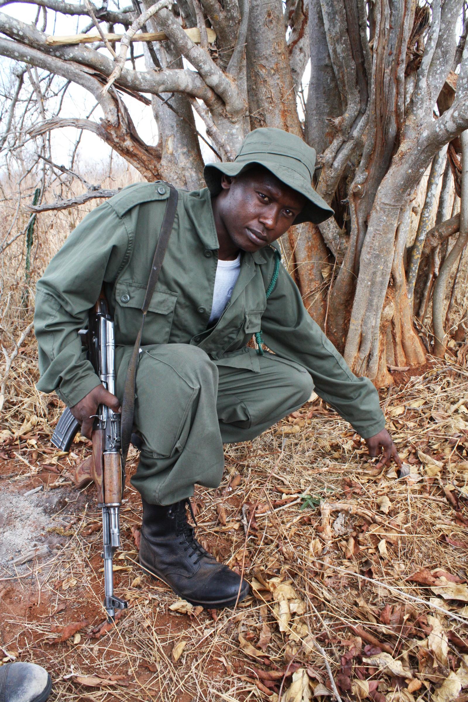 Viltvokter sporer opp krypskyttere som ledd i UNEPs aksjon Rapid Response i Kongo.
