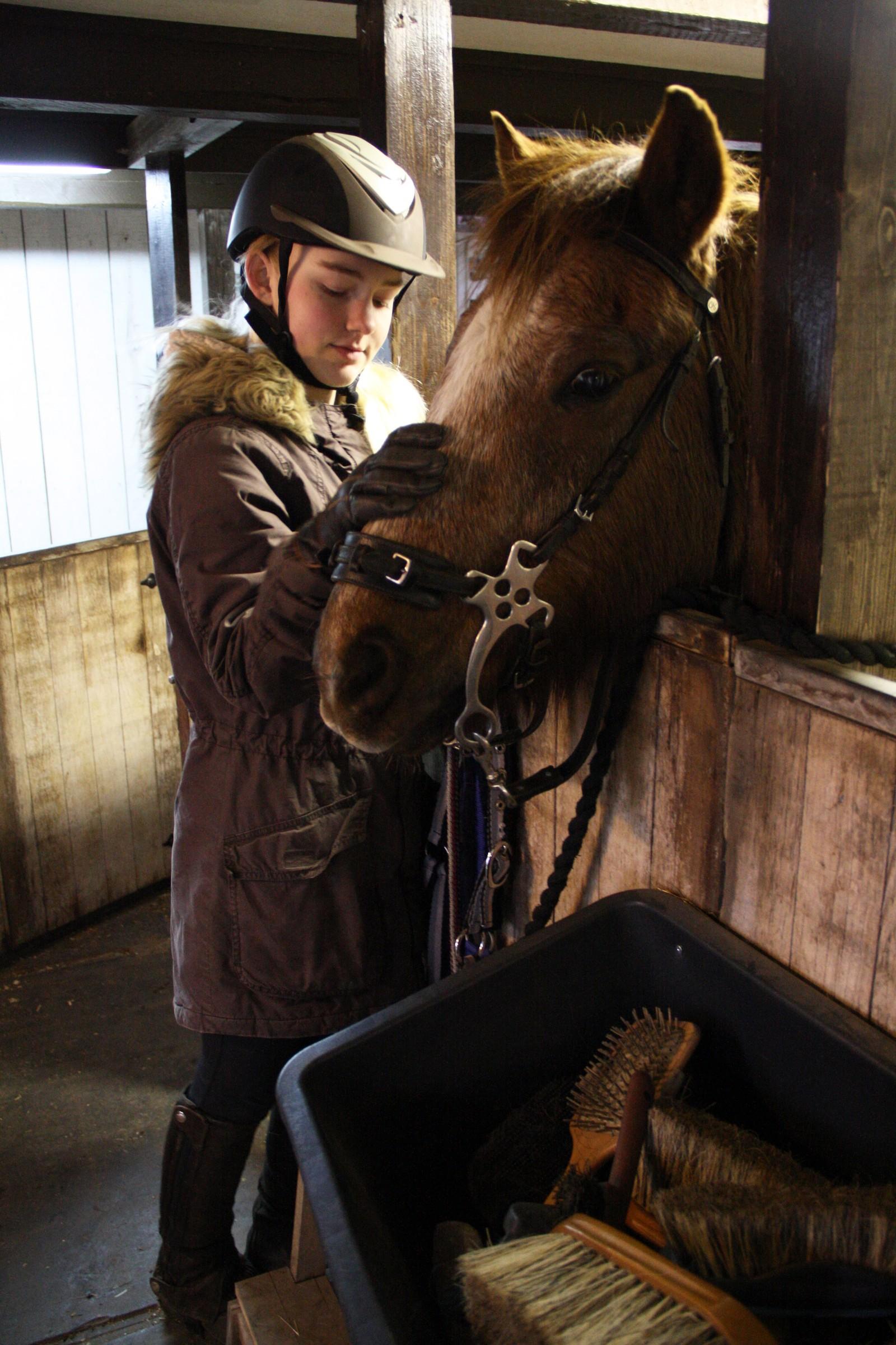Thea har drevet med hest siden hun var tre år gammel. Hun bruker mye av fritiden sin i stallen, og har lagt både penger og energi ned i utstyret til Baltus.