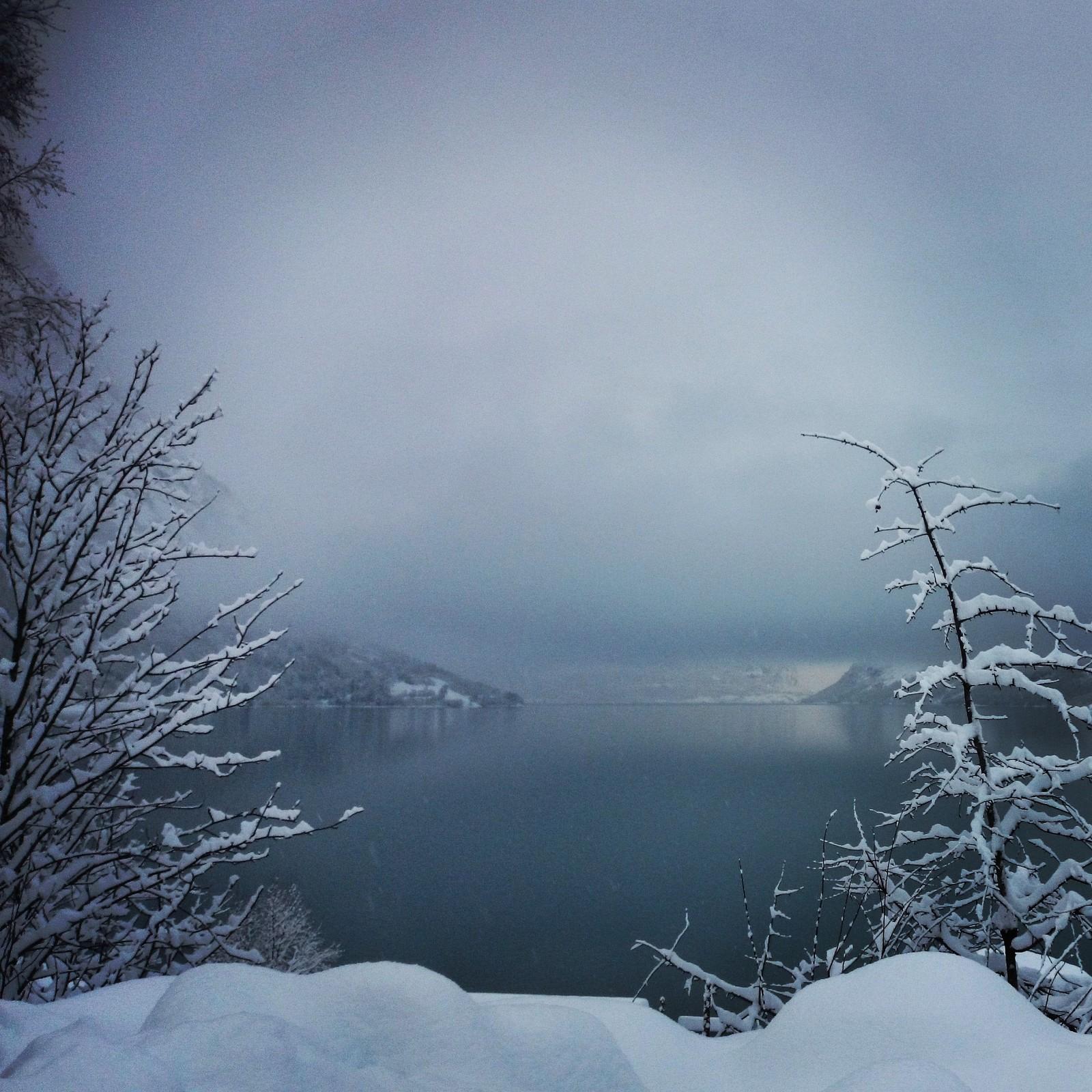 Vinter i Lodalen