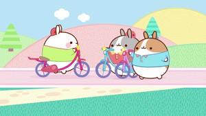 Molang og vennene på sykkeltur!