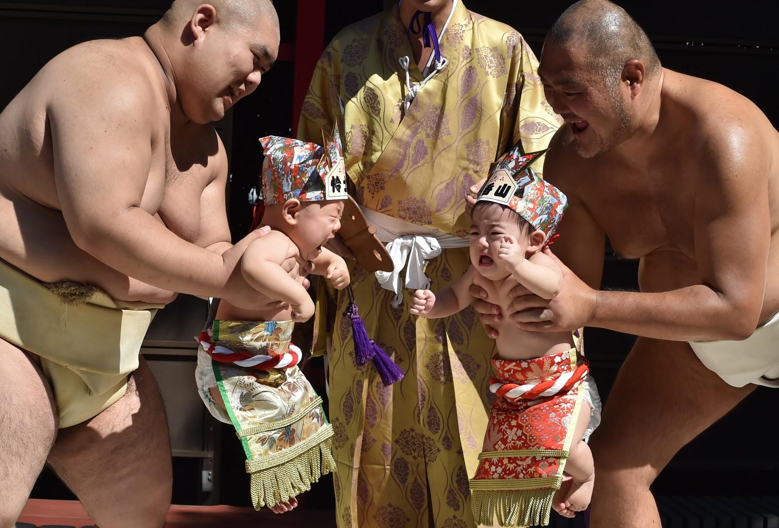 «Baby-cry Sumo» heter dette. Mange japanske foreldre tror sumobrytere kan hjelpe barna til bedre helse ved å la dem skrike ut på denne måten.