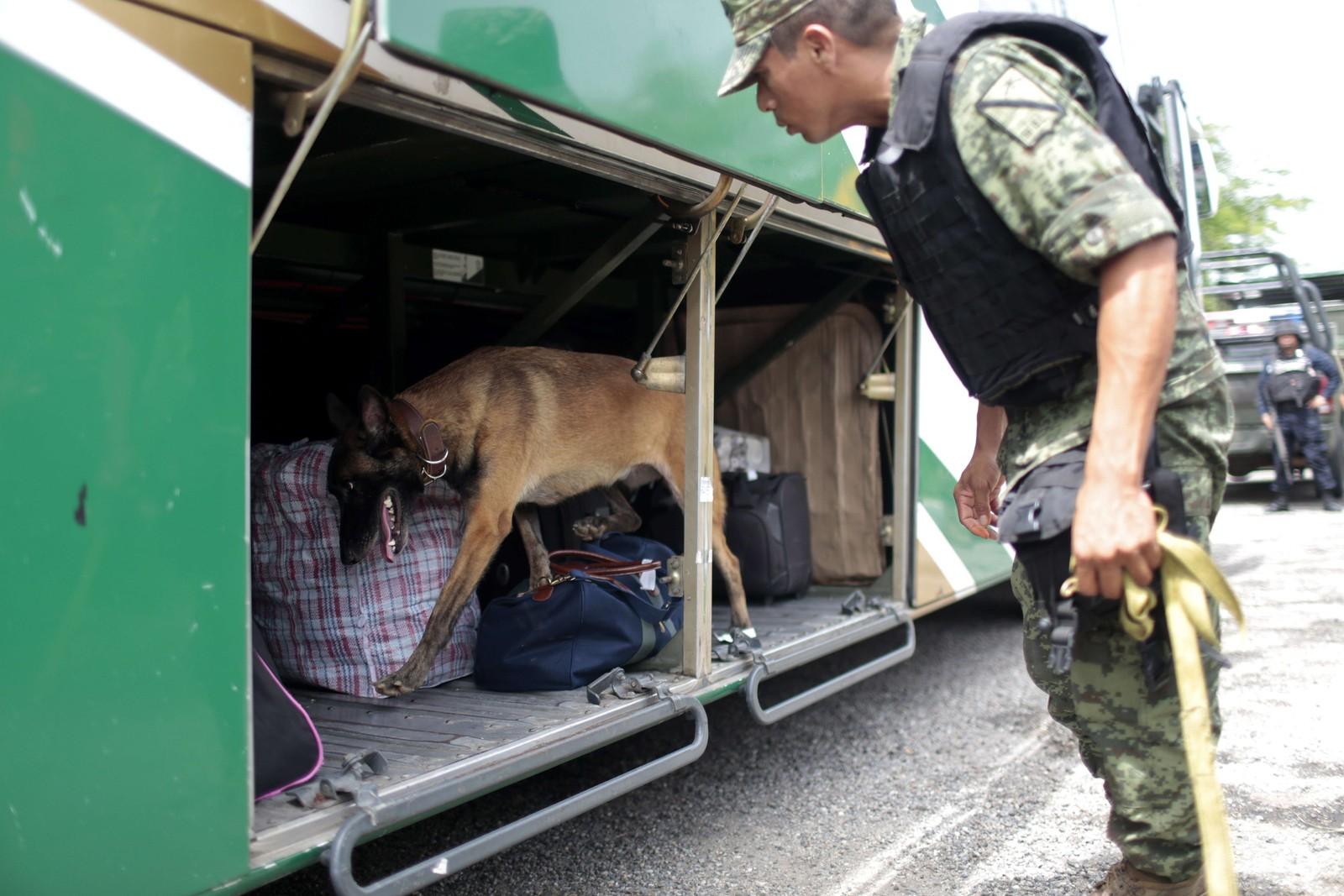 En buss kontrolleres med hunder på en motorvei mellom Mexico by og Acapulco.