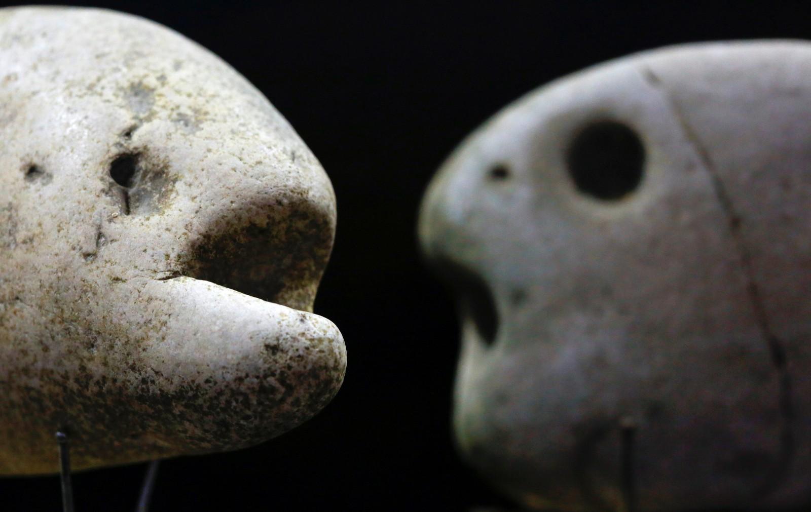 Dette er to av steinene til kunstneren og poeten Luigi Lineri. Han har titusenvis av dem. De fleste ligner dyr eller mennesker. Lineri har samlet dem ved elven Adige, nær Verona i Nord-Italia i 50 år. Adige er Italias nest lengste elv, etter Po, som er den lengste. Til Reuters sier Lineri at han vurderer å legge alle steinene tilbake ved elven igjen. Bildet er tatt den 16. august.