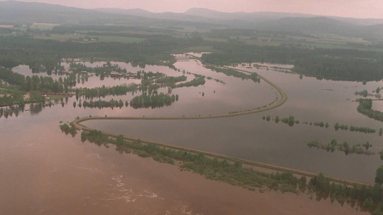 Store områder sør for Elverum lå under vann langs Glomma under flommen i 1995.